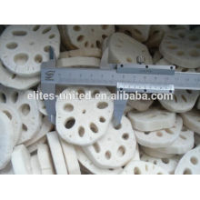 Hot sale IQF frozen fresh lotus root vegetable
